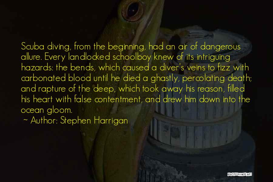 Diving In The Ocean Quotes By Stephen Harrigan