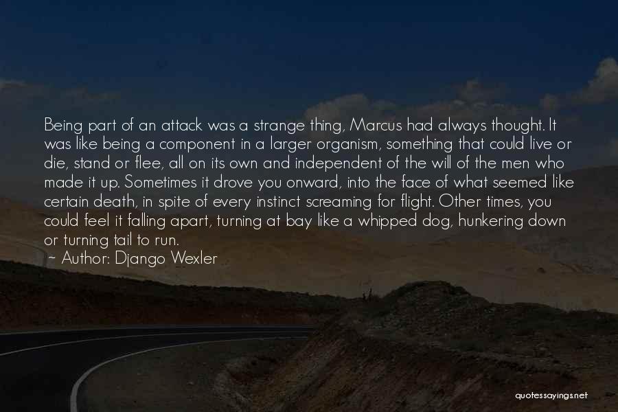 Django Wexler Quotes 1741827