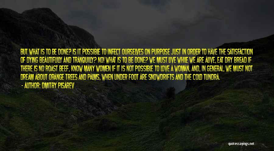 Dmitry Pisarev Quotes 1458758