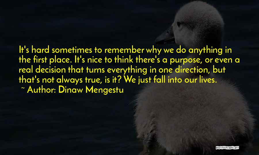 Do Not Fall Quotes By Dinaw Mengestu