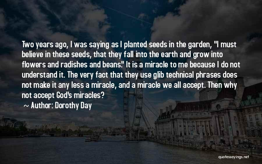 Do Not Fall Quotes By Dorothy Day