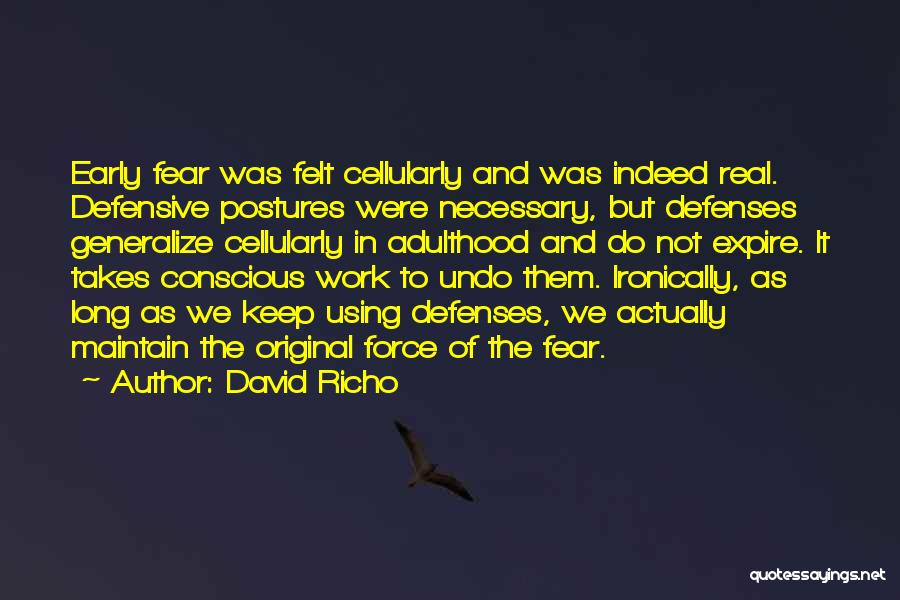 Do Not Generalize Quotes By David Richo