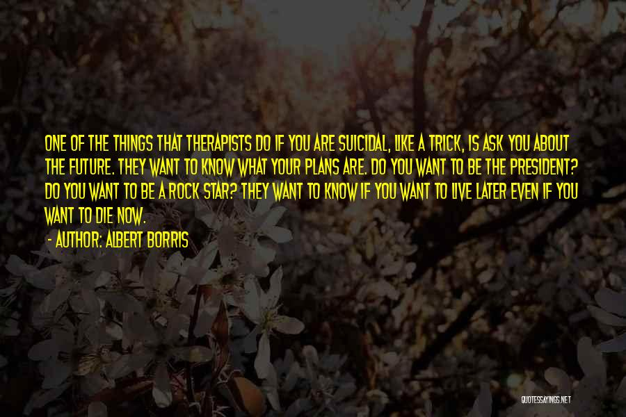 Do Things You Like Quotes By Albert Borris