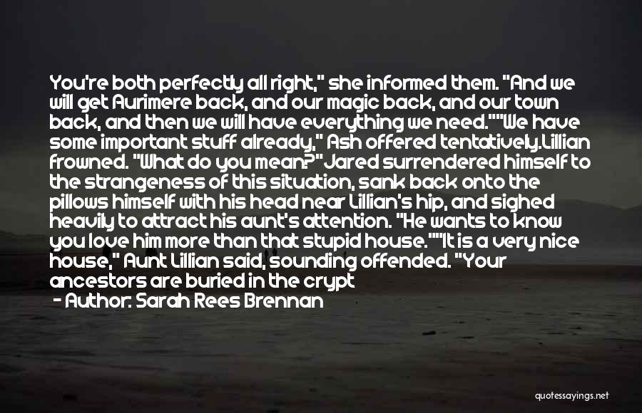 Do What You Mean Quotes By Sarah Rees Brennan