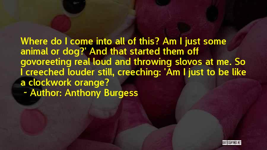 Dog And Quotes By Anthony Burgess