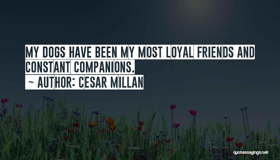 Dog And Quotes By Cesar Millan