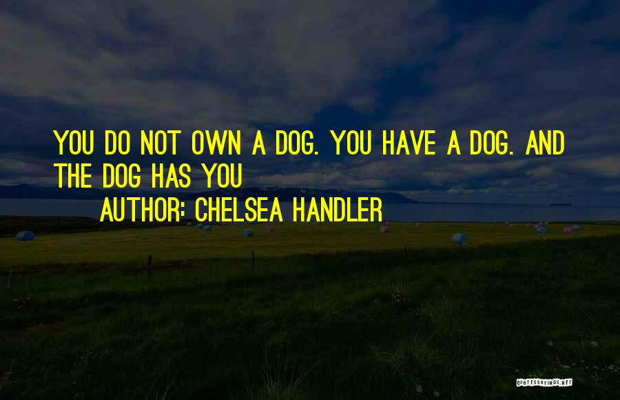 Dog And Quotes By Chelsea Handler