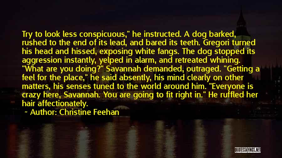 Dog And Quotes By Christine Feehan