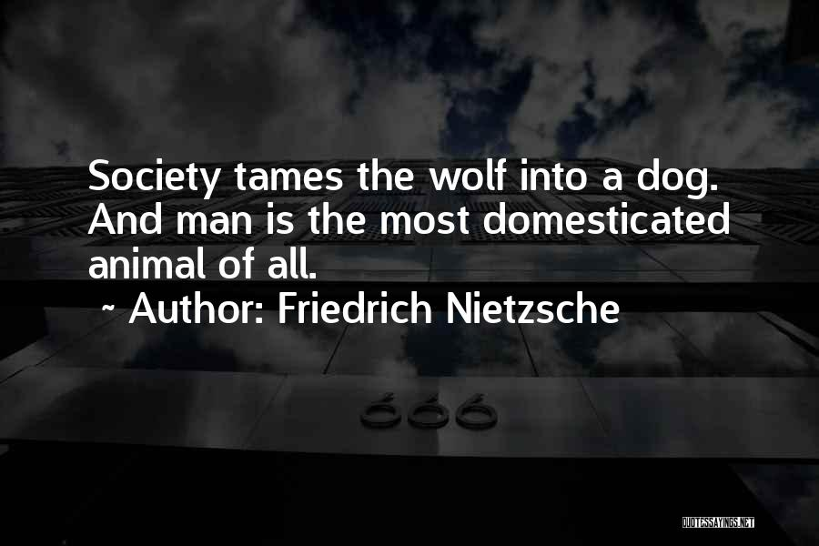 Dog And Quotes By Friedrich Nietzsche