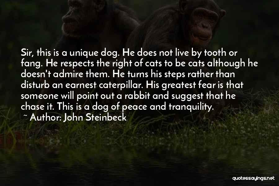 Dog And Quotes By John Steinbeck