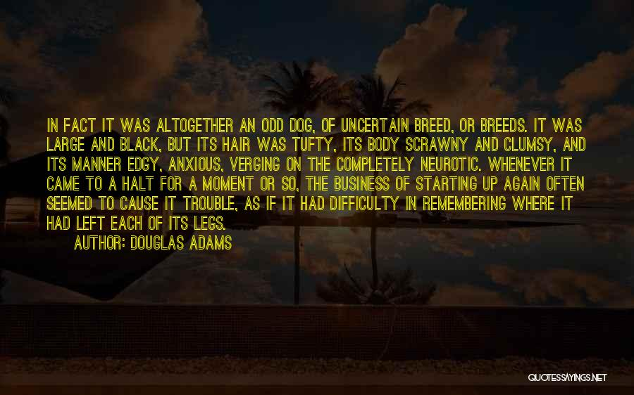Dog Breed Quotes By Douglas Adams