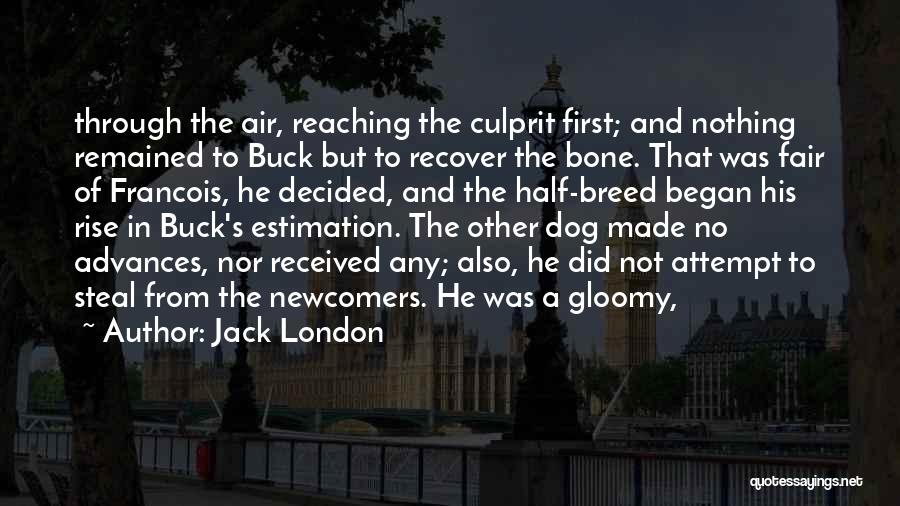 Dog Breed Quotes By Jack London