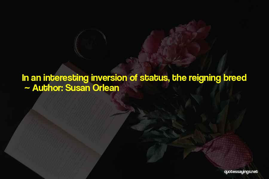 Dog Breed Quotes By Susan Orlean
