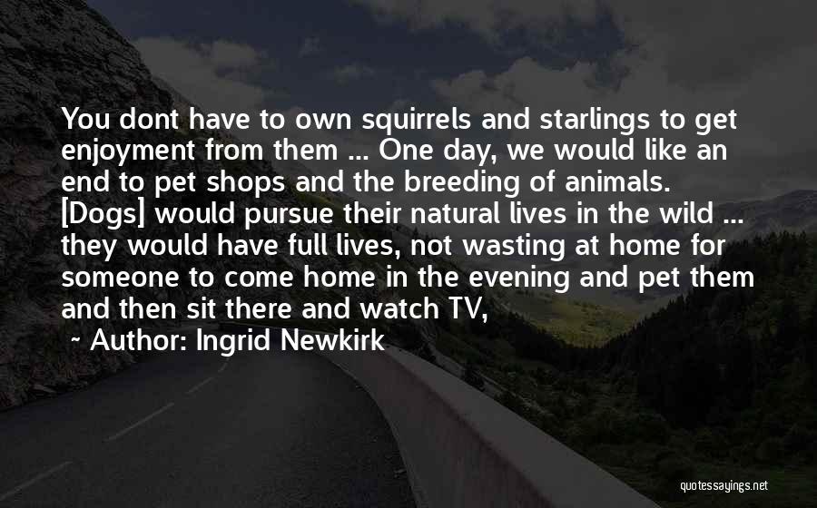 Dog Breeding Quotes By Ingrid Newkirk