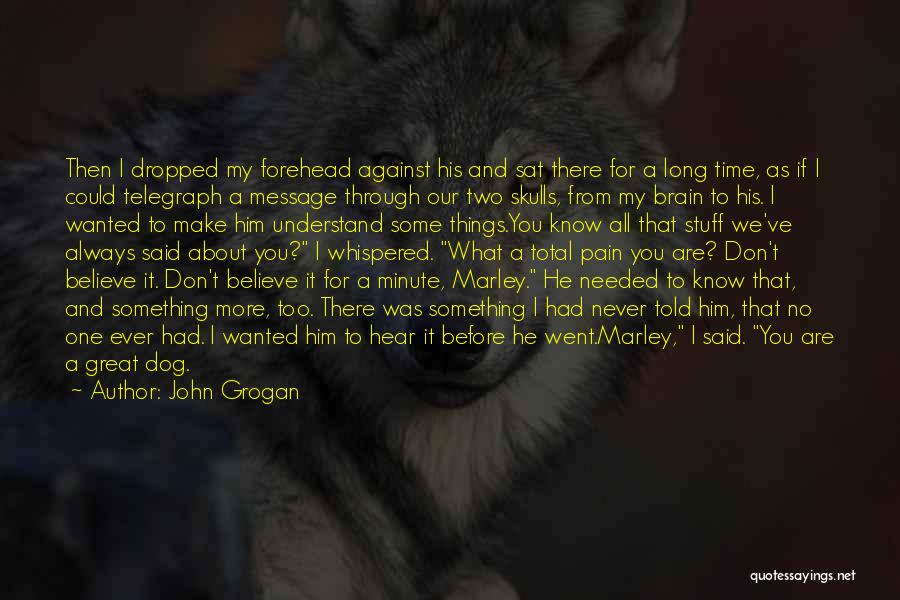 Dog Marley And Me Quotes By John Grogan