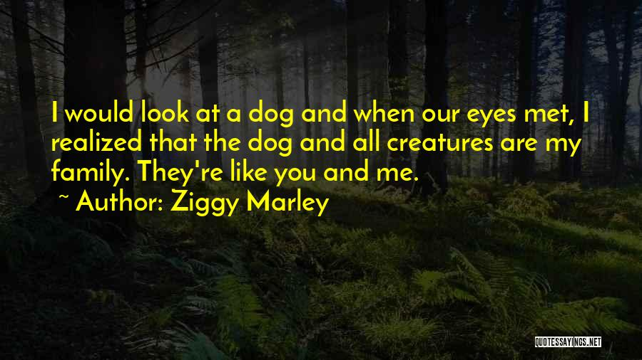 Dog Marley And Me Quotes By Ziggy Marley