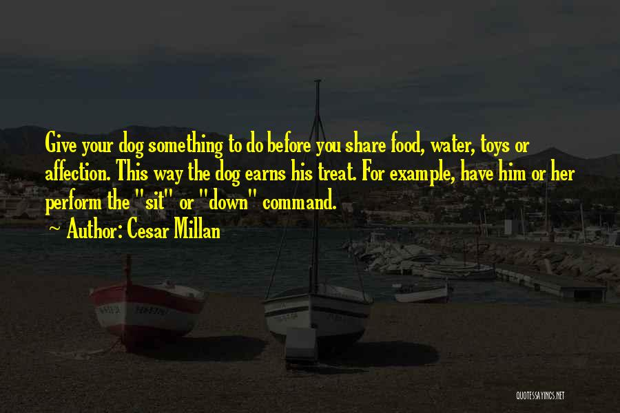 Dog Treat Quotes By Cesar Millan
