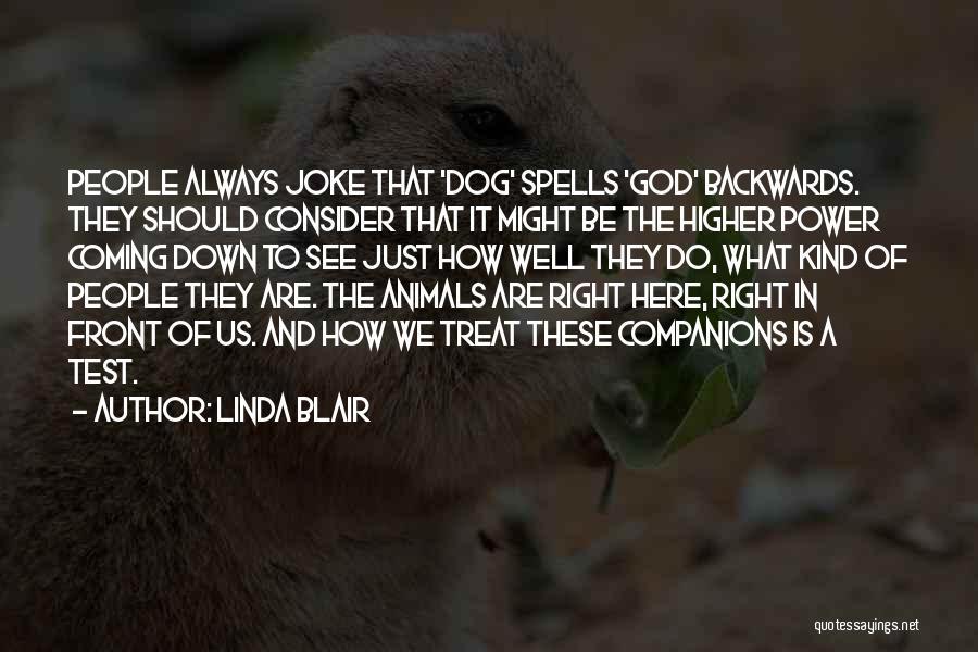 Dog Treat Quotes By Linda Blair