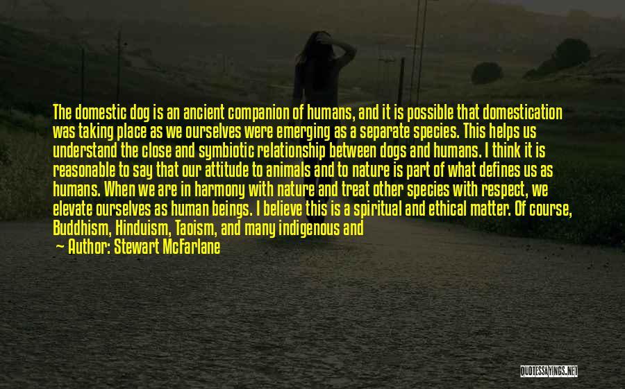 Dog Treat Quotes By Stewart McFarlane