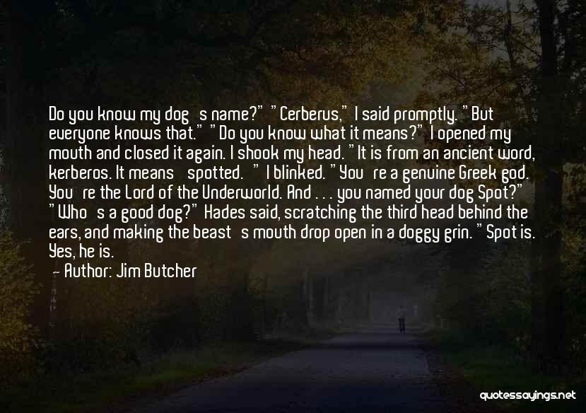 Doggy Quotes By Jim Butcher
