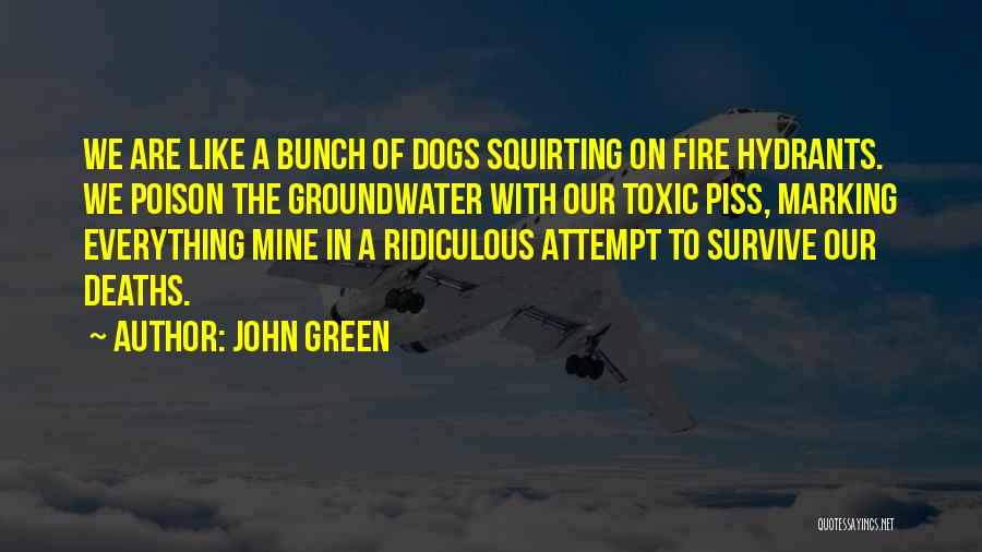 Dogs And Fire Hydrants Quotes By John Green