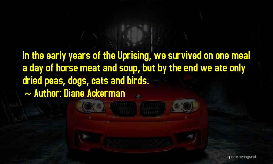 Dogs Day Out Quotes By Diane Ackerman