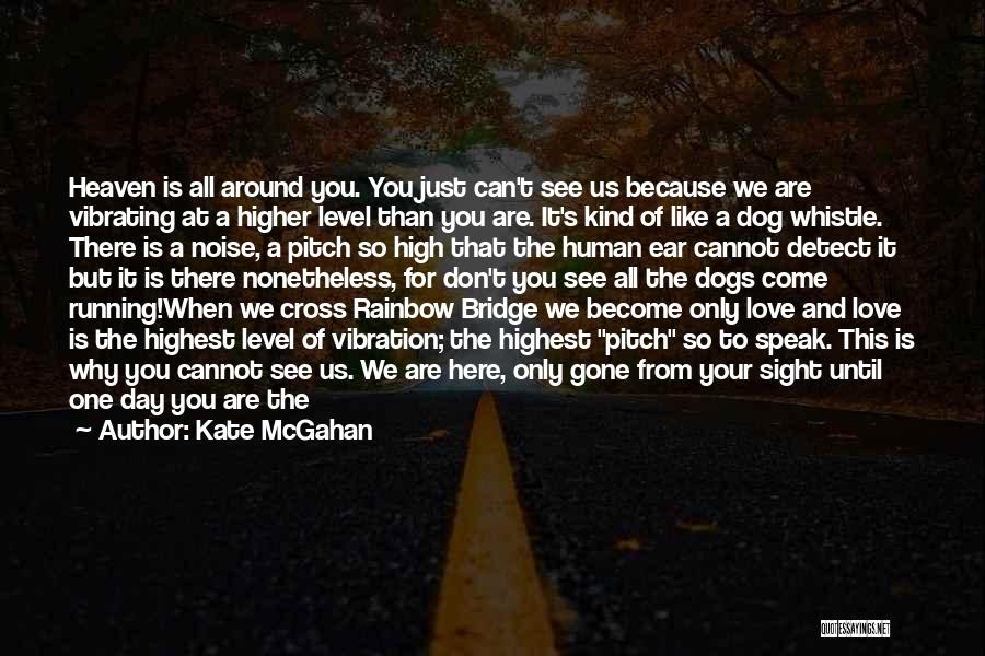 Dogs Day Out Quotes By Kate McGahan