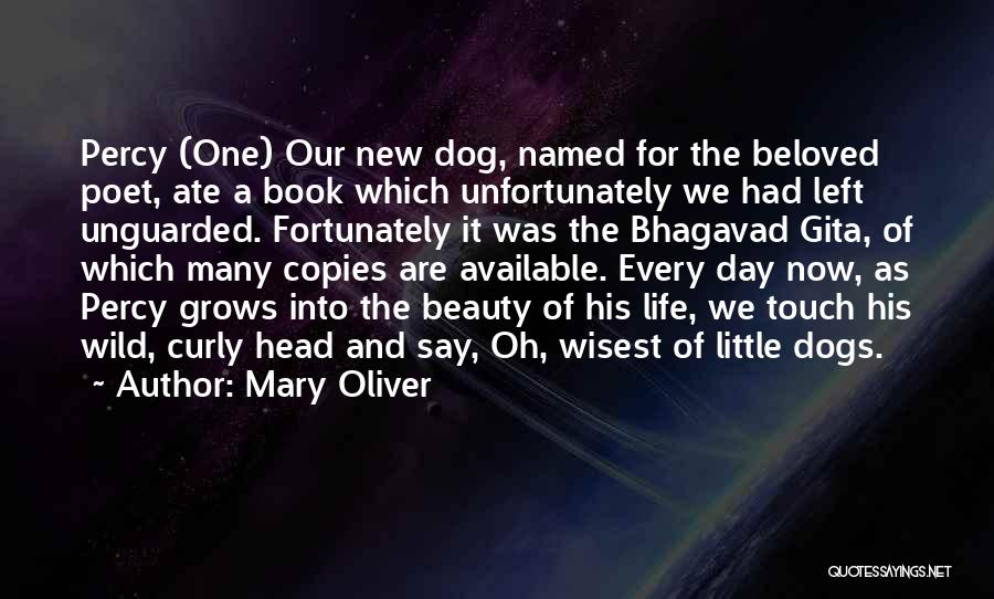 Dogs Day Out Quotes By Mary Oliver