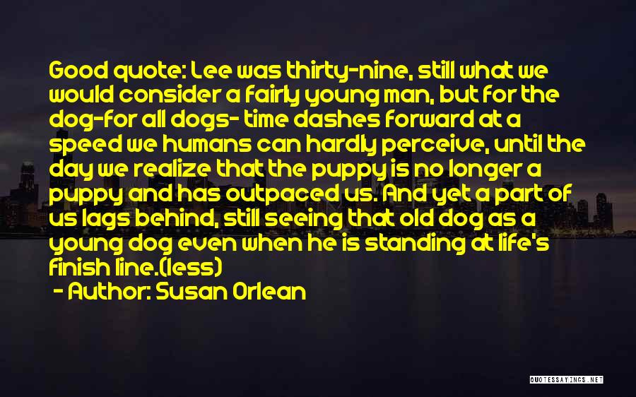 Dogs Day Out Quotes By Susan Orlean