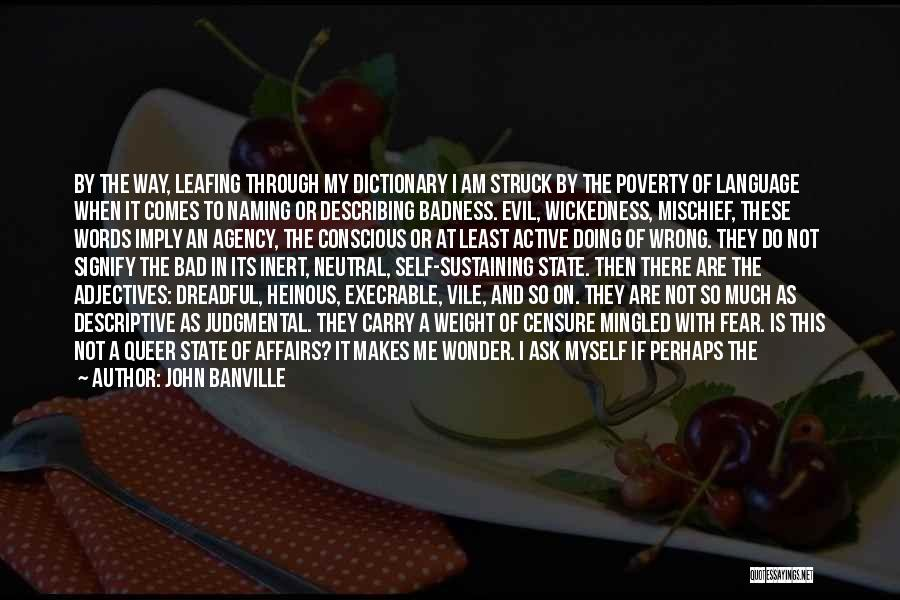 Doing Bad By Myself Quotes By John Banville