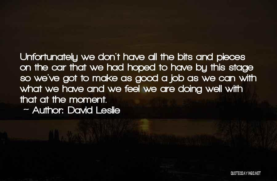 Doing Job Well Quotes By David Leslie