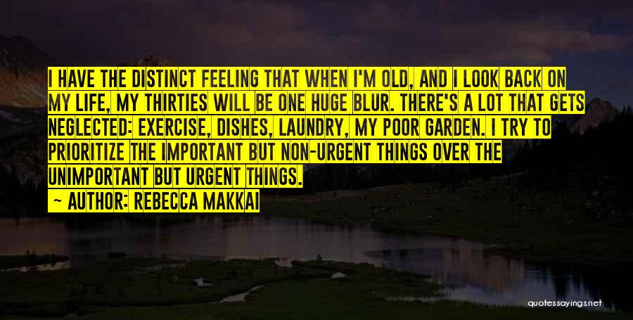 Doing My Laundry Quotes By Rebecca Makkai