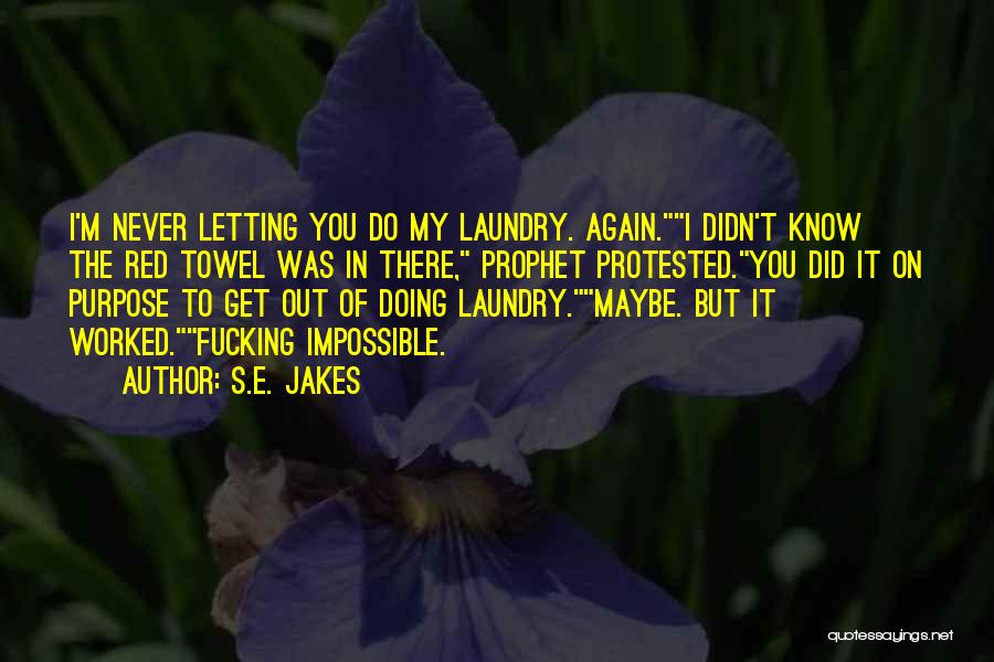 Doing My Laundry Quotes By S.E. Jakes