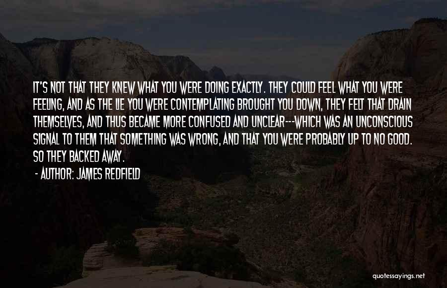 Doing Something Wrong Quotes By James Redfield