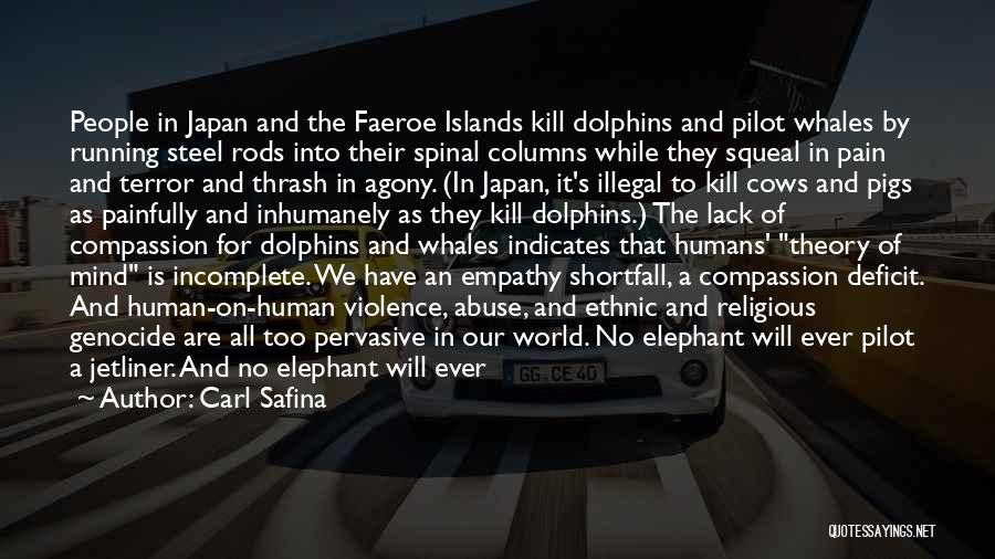Dolphins And Whales Quotes By Carl Safina