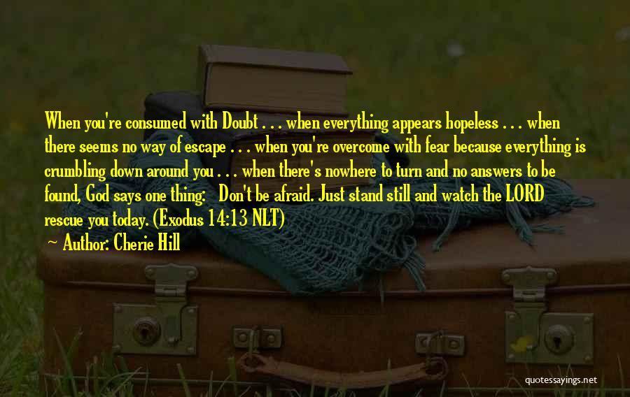 Don Be Afraid Of Fear Quotes By Cherie Hill