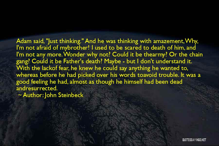 Don Be Afraid Of Fear Quotes By John Steinbeck
