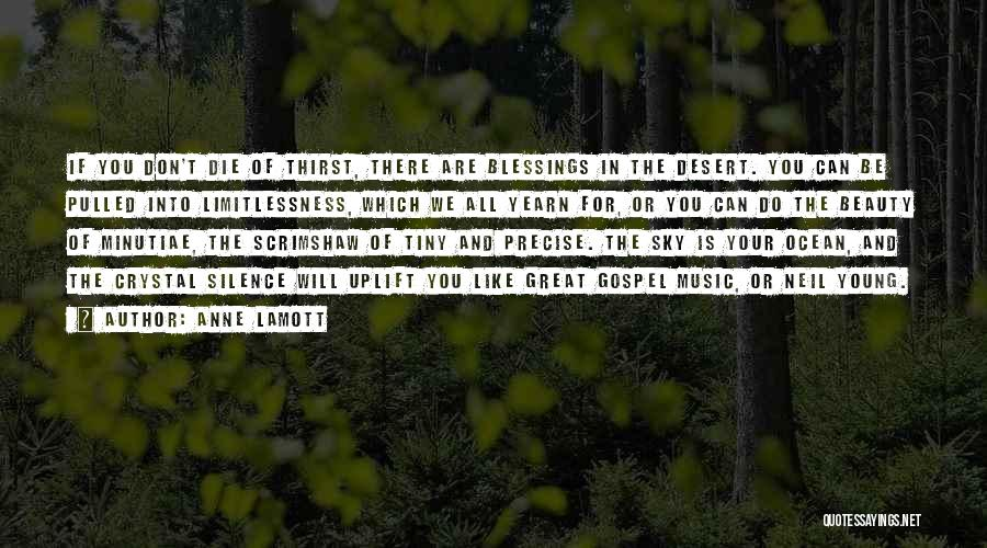 Don Die Quotes By Anne Lamott