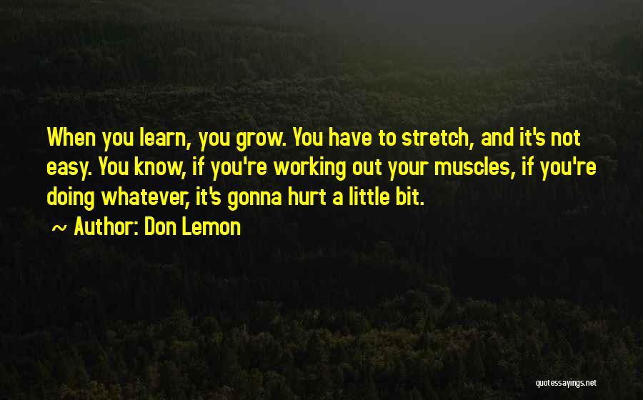 Don Lemon Quotes 455441