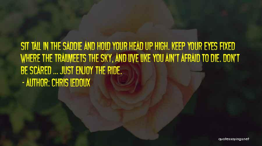 Don't Be Afraid To Live Quotes By Chris LeDoux