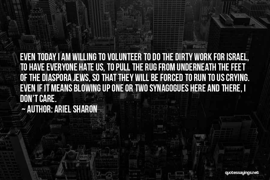 Don't Care If You Hate Me Quotes By Ariel Sharon