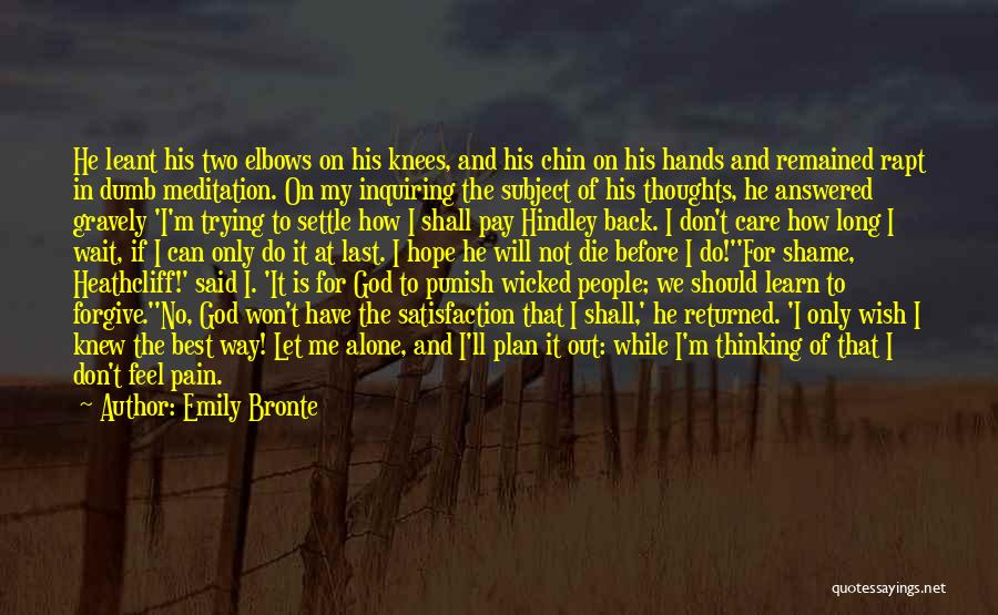 Don't Care If You Hate Me Quotes By Emily Bronte