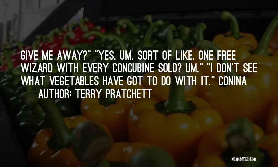 Don't Ever Give Up On Me Quotes By Terry Pratchett