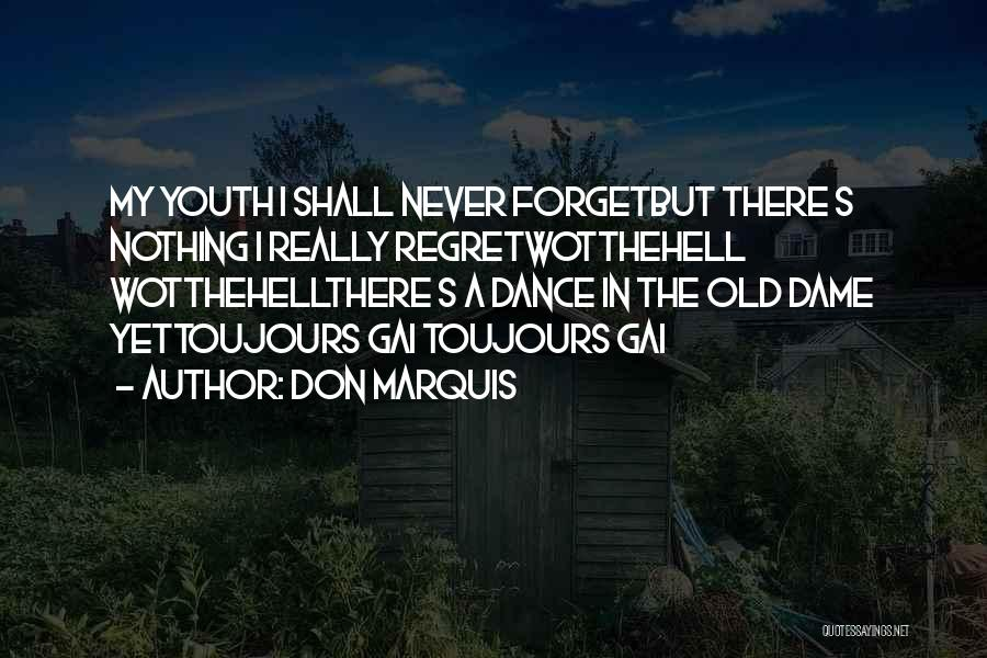 Don't Forget What We Had Quotes By Don Marquis