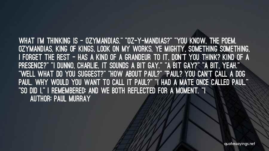 Don't Forget What We Had Quotes By Paul Murray
