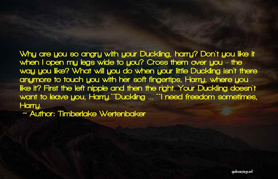 Don't Get Angry On Me Quotes By Timberlake Wertenbaker