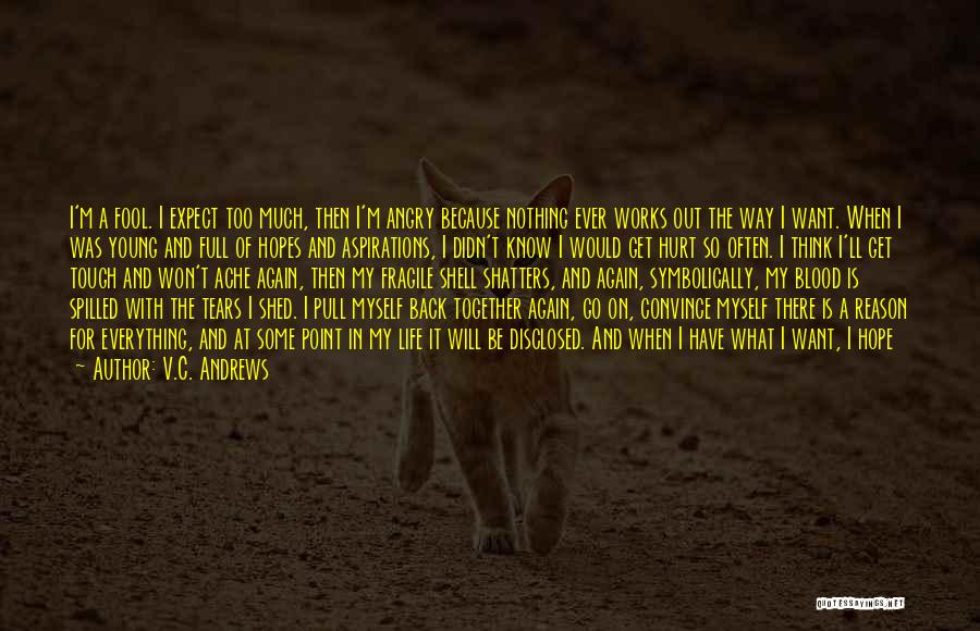 Don't Get Angry On Me Quotes By V.C. Andrews