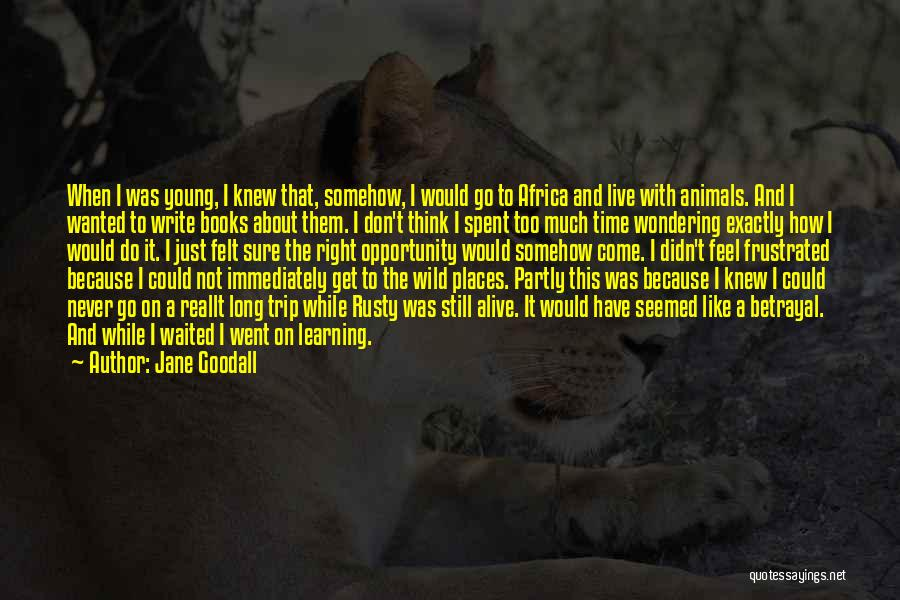 Don't Get Frustrated Quotes By Jane Goodall