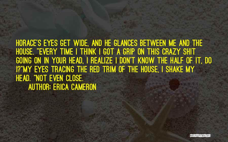 Don't Get Too Close To Me Quotes By Erica Cameron