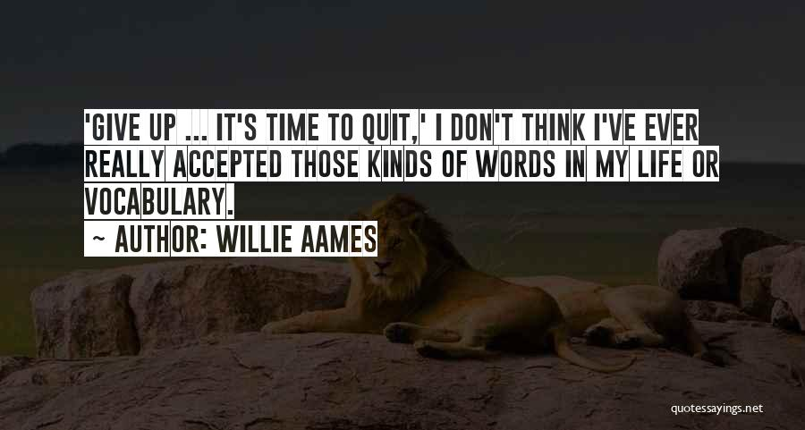 Don't Give It Up Quotes By Willie Aames